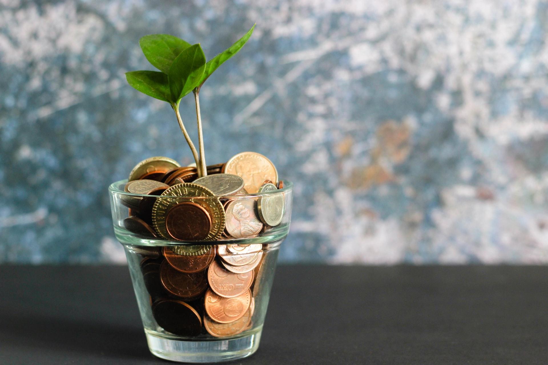 Gode råd til at spare penge i hverdagen
